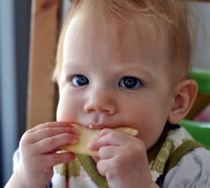 Baby-lead-weaning
