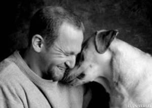 perro-dueno.520.360